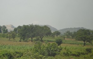 Nigeria countryside